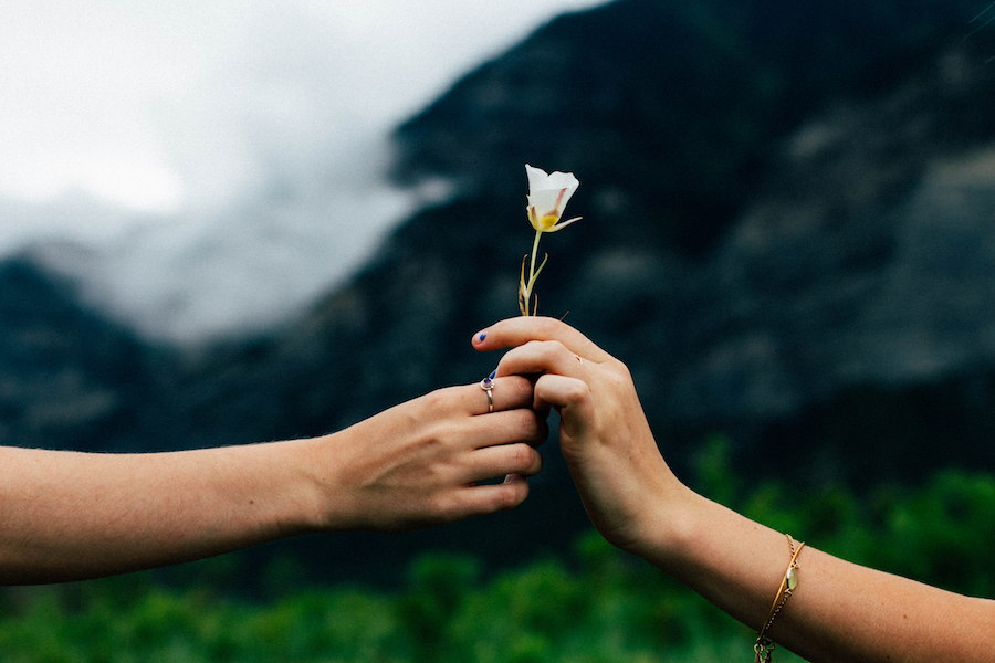 person giving flower to another person